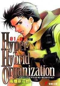Hyper hybrid organization 01-02